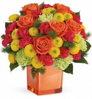 Citrus Smiles  in Chesapeake, VA | Floral Creations