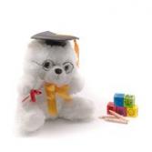 """Class of 2019 Bear (10"""")"""