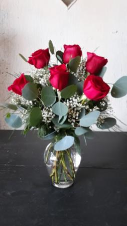 CLASSIC ROSES- 1/2 DOZEN