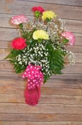 Classic 1/2 Dozen Carnation Vase