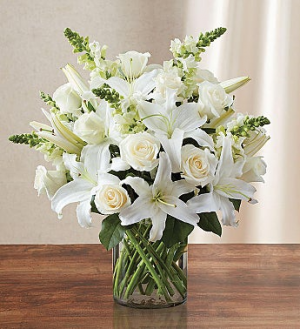 Classic All White Arrangement BEST SELLER!!  in Sunrise, FL | FLORIST24HRS.COM
