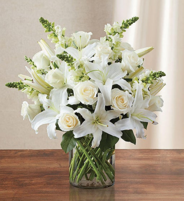 Classic All White Arrangement for Sympathy Sympathy