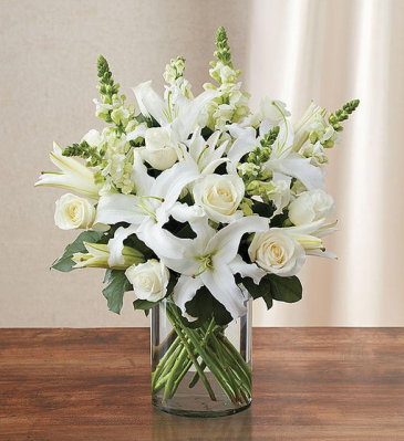 Classic All White Arrangement™ Vase Arrangement