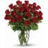 Tulip Topia 20 mix tulips