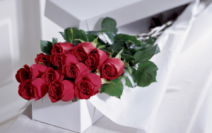 Classic boxed Roses Love in Whittier, CA | Rosemantico Flowers