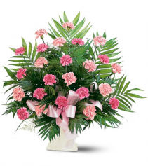 Classic Carnation Arrangement by Teleflora
