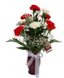 Classic Carnations- Vase