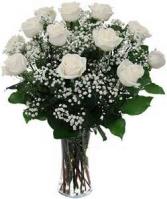 Classic Doz White Roses Fresh Flowers