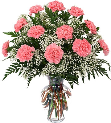 Classic Dozen Carnations Vase Arrangement