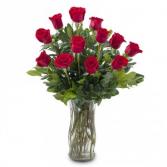 Classic Dozen Roses 1 dozen red roses arranged classically in a beautiful vase