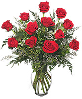 Classic Dozen Roses Red Rose Arrangement in Sandwich, Illinois | JOHNSON'S FLORAL & GIFT