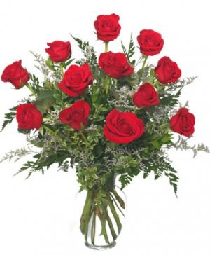 Classic Dozen Roses Red Rose Arrangement in Oakland, ME | VISIONS FLOWERS & BRIDAL DESIGNS