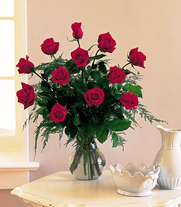 Classic Dozen 12 LONG STEM ROSES FOR SOMEONE YOU CARE