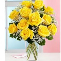Classic Dozen Yellow Roses
