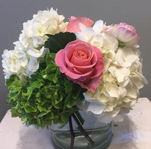 Classic Hydrangea  in Brentwood, TN | BRENTWOOD FLOWER SHOPPE