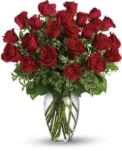 Classic Red Roses Long Stem Red Rose