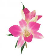 Classic Orchid Boutonniere Prom