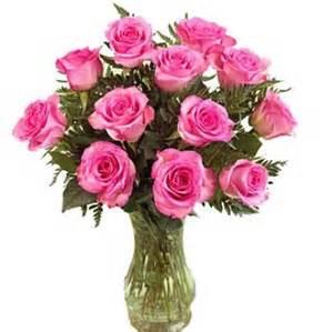 classic pink dozen roses roses