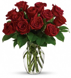 Classic Red Long Stem Roses Roses