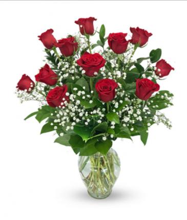 Classic Red Roses Dozen