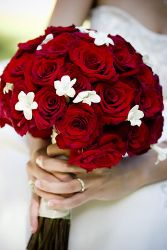 Classic Red & White Wedding Bouquet
