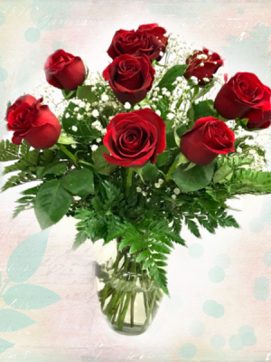 Classic Rose Dozen Valentine's Day in Mount Pearl, NL | MOUNT PEARL FLORIST