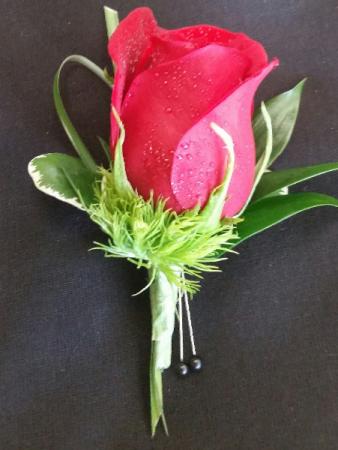 CLASSIC ROSE RED