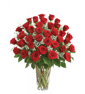 Classic Three Dozen Roses  in Dayton, OH | FLOWERAMA