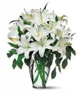 Classic White Lilies Vase Arrangement