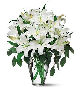Classic White Lilies Vase Arrangement in Chatham, NJ | SUNNYWOODS FLORIST