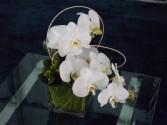 Classic Whites 2 Flower Arrangement