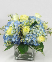 Classical Dreams Fresh Floral Arrangement