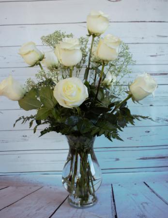 Classis White Long Stem  Roses