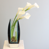 Classy Mini Calla Lilies LOCAL DELIVERY ONLY