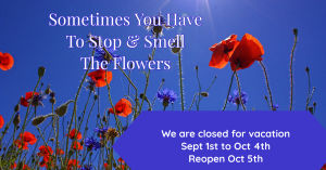 closed for vacation closed sept 1 to oct 4 in Key West, FL | Petals & Vines