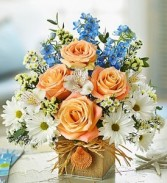 Coastal Breeze Arrangement by Enchanted Florist