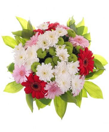 Coco Bouquet