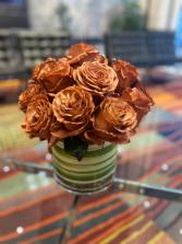 Coffee Mocha Garden Roses
