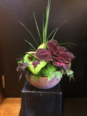 Collis Planter   in Fowlerville, MI   ALETA'S FLOWER SHOP