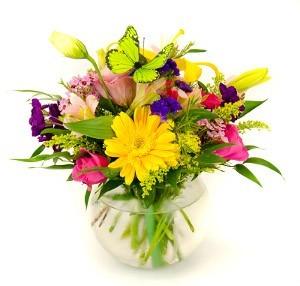Color Bowl Mixed Springy Arrangment