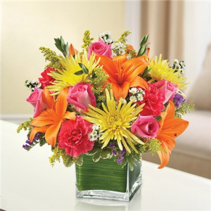 Color Burst Arrangement in cube in Cherokee, IA | Blooming House