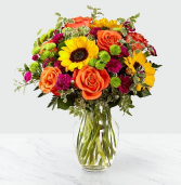 Color Craze™  Arrangement