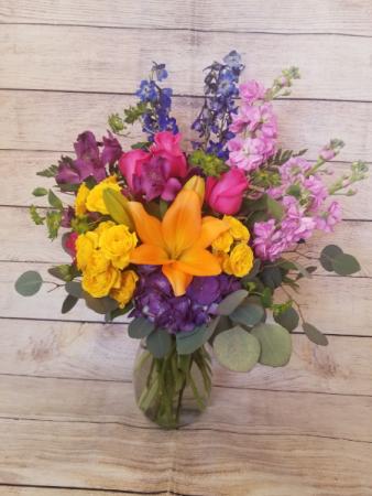 Color Medley 1 Spring
