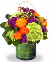 Color Pop Vase arrangement
