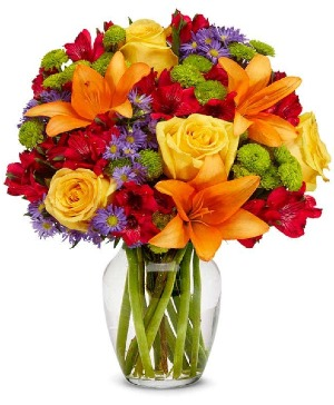 COLOR SPLASH Vase Arrangement in Longview, TX | ANN'S PETALS