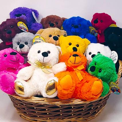 Colorama Bears Cuddly Plush Bear
