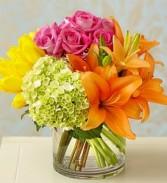 Roma Florist Colorburst of Spring™