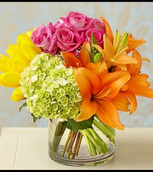 Colorburst of Spring™ Arrangement in Croton On Hudson, NY   Cooke's Little Shoppe Of Flowers