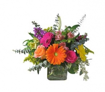 Colorful Beauty Arrangement in cube