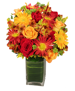 Colorful Canvas Arrangement in Burnt Hills, NY | THE COUNTRY FLORIST